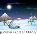 igloo in snow scene 48444272
