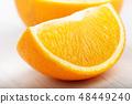 slice of orange on a white background 48449240