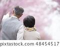 看在樱花后的资深夫妇 48454517