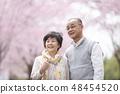 微笑在樱花的资深夫妇 48454520