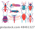 Colorful Insects Set, Cute Butterfly, Beetle, Bug, Dragonfly, Top View Vector Illustration 48461327
