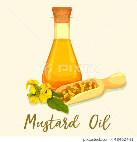 Bottle with mustard oil with seeds in scoop 48462441