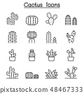 Cactus and succulent plant icon set in thin line 48467333