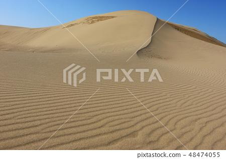 Tottori sand dunes 48474055