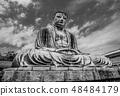 Famous Great Buddha in Kamakura Daibutsu Temple 48484179