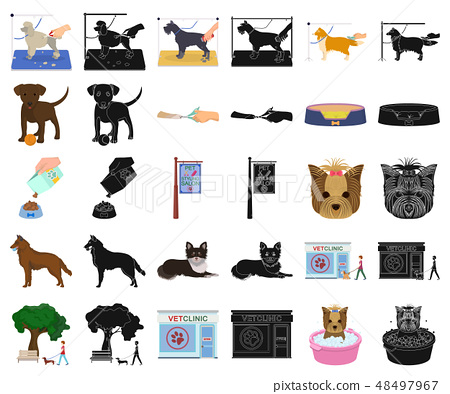 Pet cartoon,black icons in set collection for design. Care and education vector symbol stock web 48497967