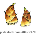 Bamboo shoot bamboo shoots illustration 48499970