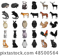 Realistic animals cartoon,black icons in set collection for design. Wild and domestic animals vector 48500564