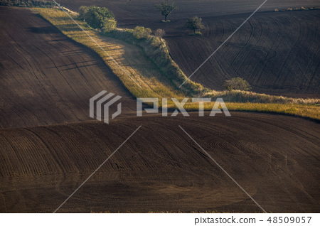 Wavy  autumn fields in Moravian Tuscany 48509057