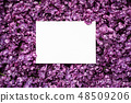 Spring background with lilac flowers frame 48509206