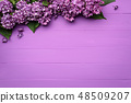 Spring card with a lilac border of flowers 48509207