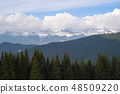 Spring in the mountains 48509220