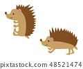 Hedgehog clipart 48521474