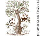 cute duo owls hang on the tree 48523233