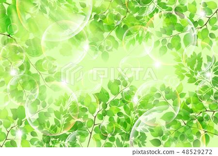 新的綠色葉子綠色背景 48529272