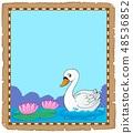 Swan theme parchment 1 48536852