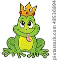Frog with crown theme image 1 48536894