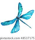 蓝色 蜻蜓 水彩画 48537175