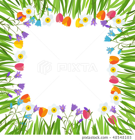 Spring Tulip, Bluebell, Narcissus  Flowers  48548103