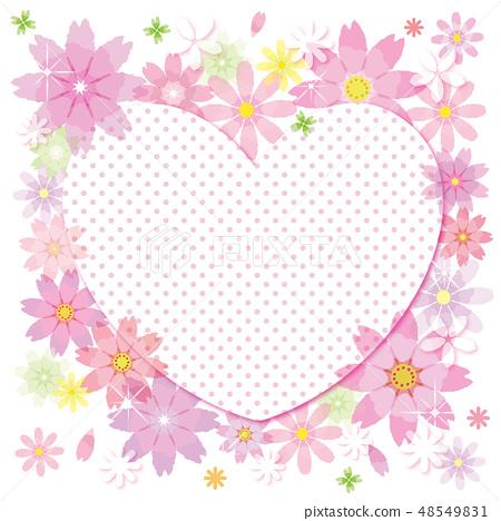 코스모스 꽃 프레임 배경 하트 스트라이프 48549831