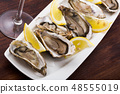 Opened raw oysters with lemon 48555019