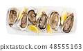 Oysters with lemon on plate 48555163