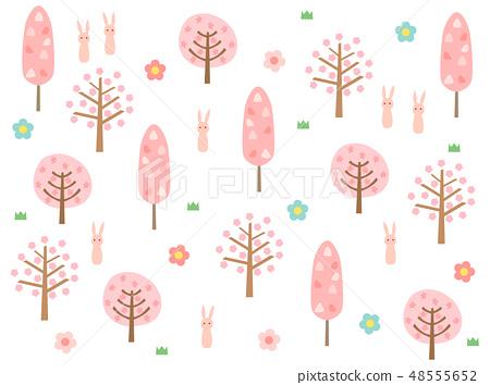 봄의 숲 6 48555652