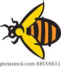 昆蟲圖像,例證 48556631