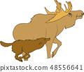 動物圖像,例證 48556641