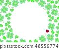 Clover white clover white lentils 48559774