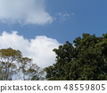 Blue sky and white clouds 48559805