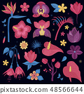 Tropical Night Flowers Set 48566644