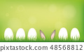 hare ears hide in the lawn between easter eggs on green spring background 48568812