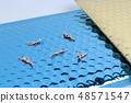 fun of the Tiny toy in the sea 48571547