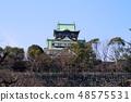 Osaka Castle 48575531