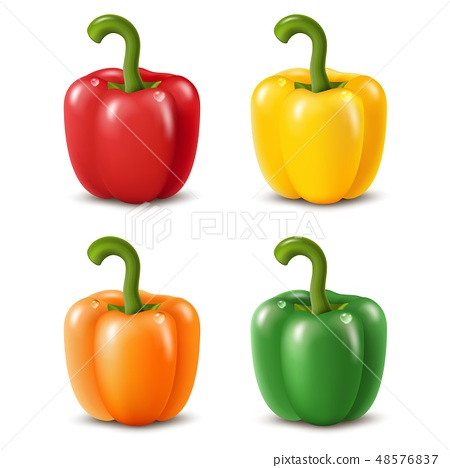 Colorful paprika peppers isolated on white. Vector illustration 48576837