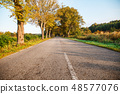 asphalt road in the forest 48577076