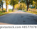 asphalt road in the forest 48577078