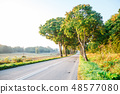 new asphalt road in the forest 48577080