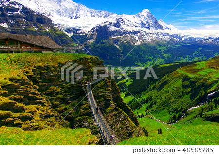瑞士阿爾卑斯 48585785