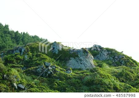 송악산,바위, 48587998