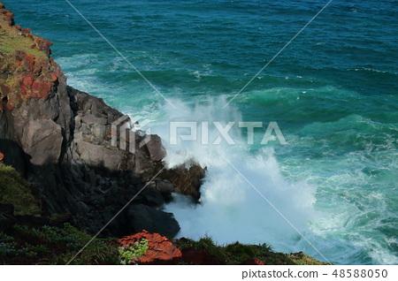 제주 서귀포 해안, 바다, 48588050