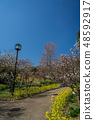 Suma Rikyu Park where the plum is in full bloom 48592917
