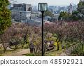 Suma Rikyu Park where the plum is in full bloom 48592921