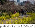 Suma Rikyu Park where the plum is in full bloom 48592923