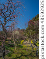 Suma Rikyu Park where the plum is in full bloom 48592925