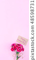 Mother's Day Carnation Gift Card カーネーション トップビュー モックアップ Mother's Day carnation 48598731