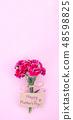 Mother's Day Carnation Gift Card カーネーション トップビュー モックアップ Mother's Day carnation 48598825