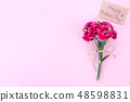 Mother's Day Carnation Gift Card カーネーション トップビュー モックアップ Mother's Day carnation 48598831