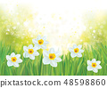 Vector daffodil flowers on spring background. 48598860